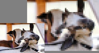 Incorrectly resized raster image file