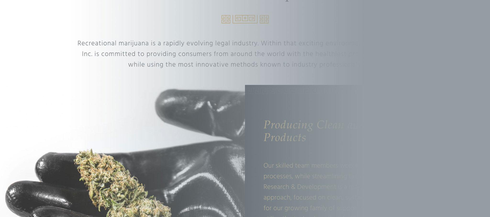 Snapshot of the Apollo Grown Website Design